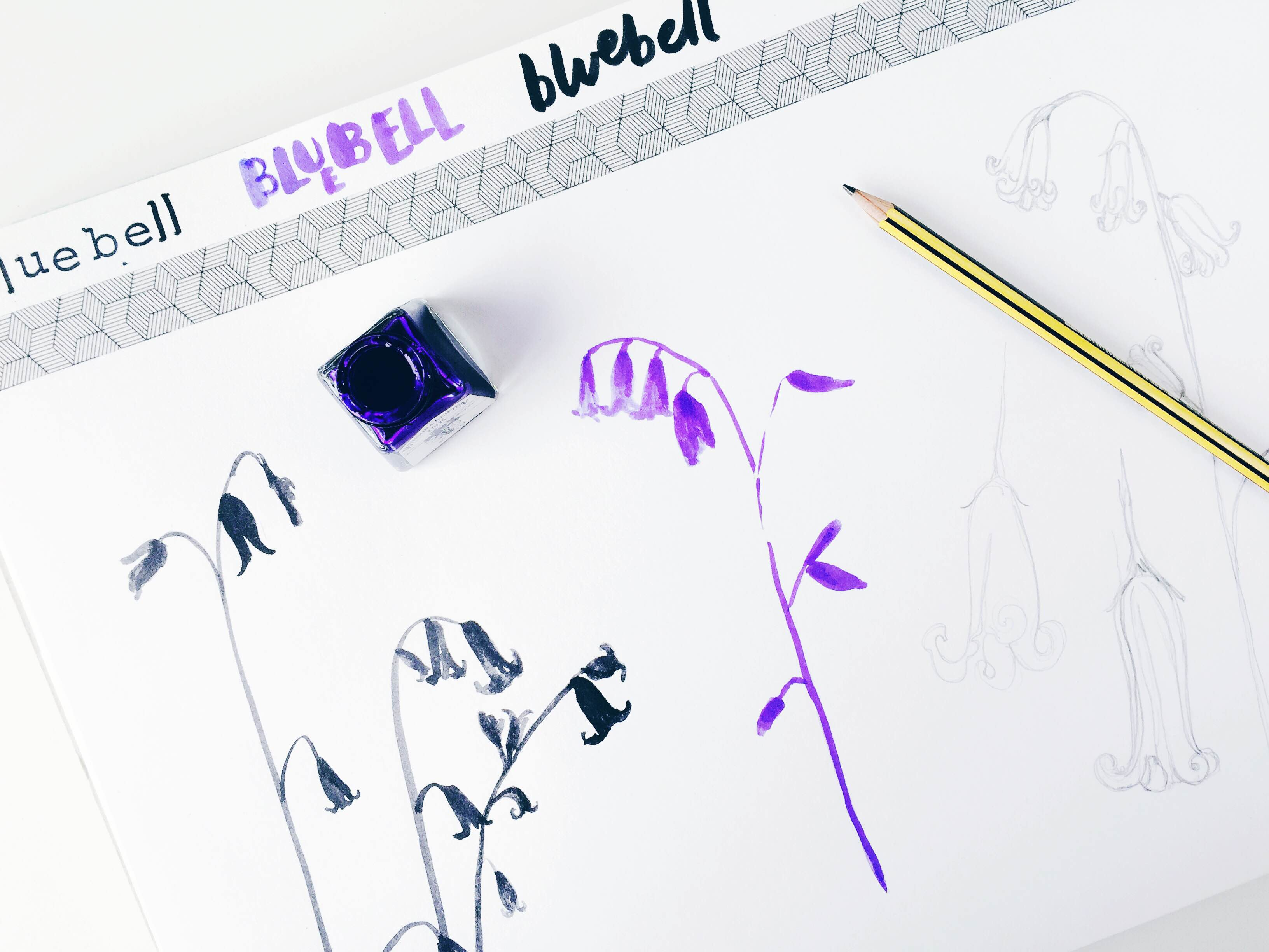 bluebell sketchbook page