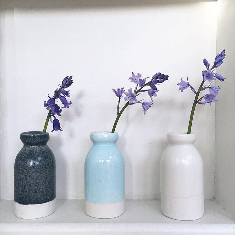 bluebells in pots ceramicmagpie instagram