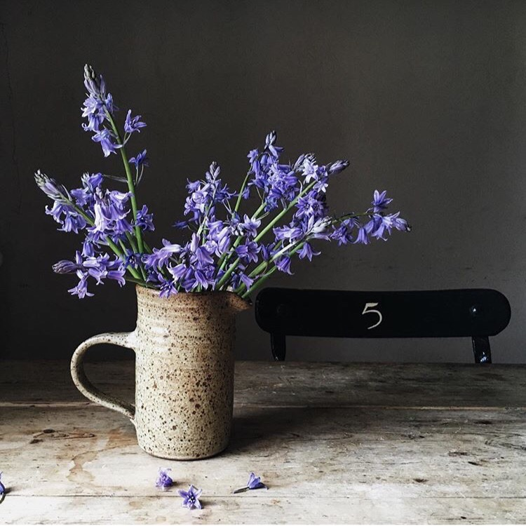 bluebells silver pebble instagram