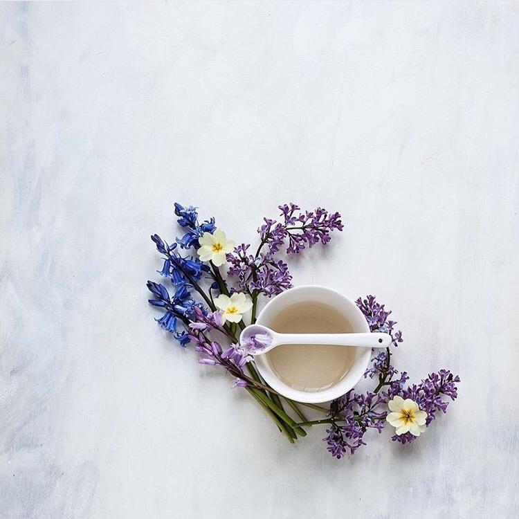 flower flatlay cristinacolli instagram