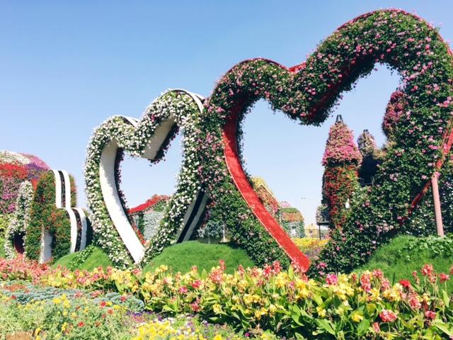Miracle Garden Dubai 18