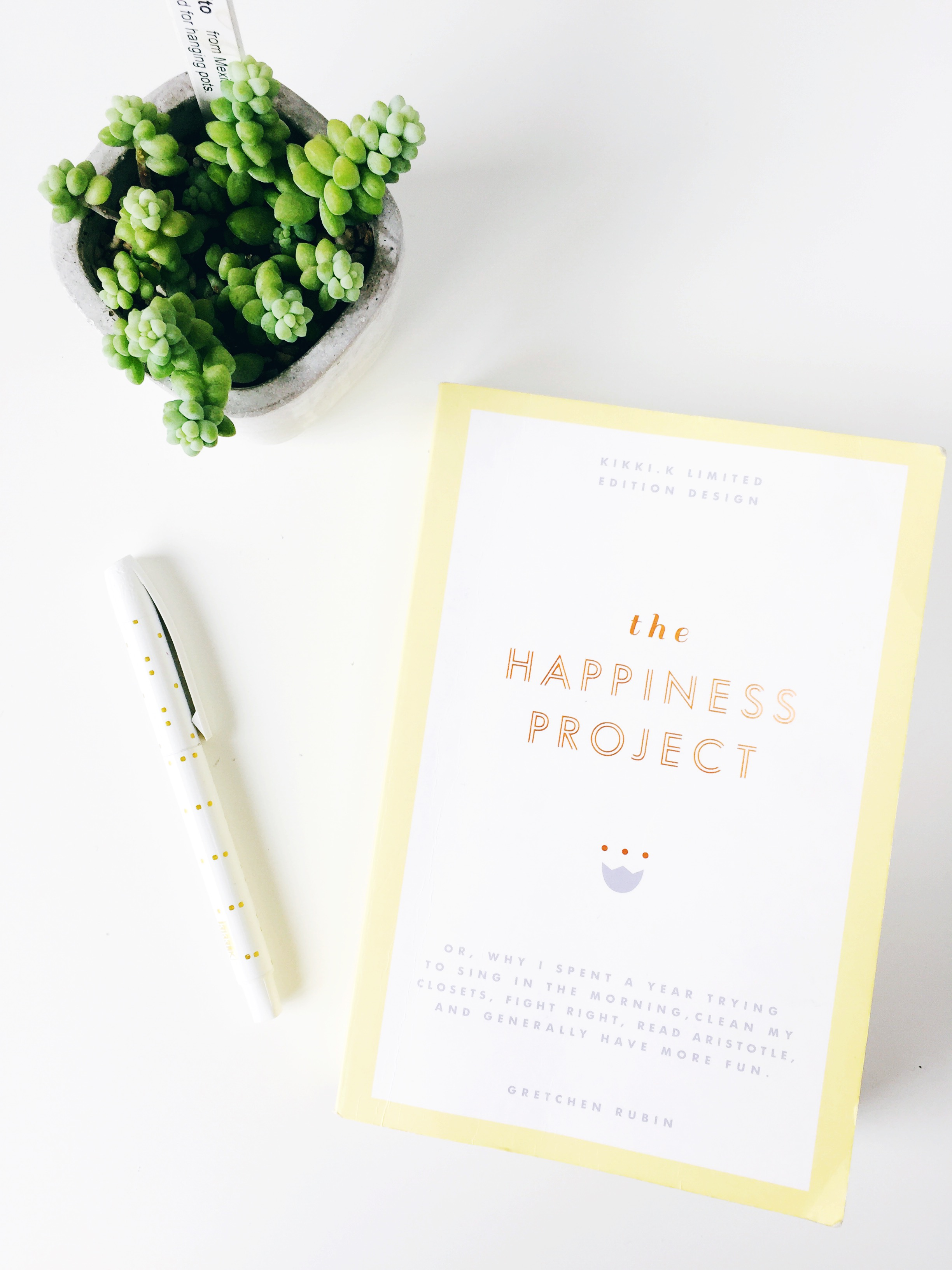 the happiness project front cover