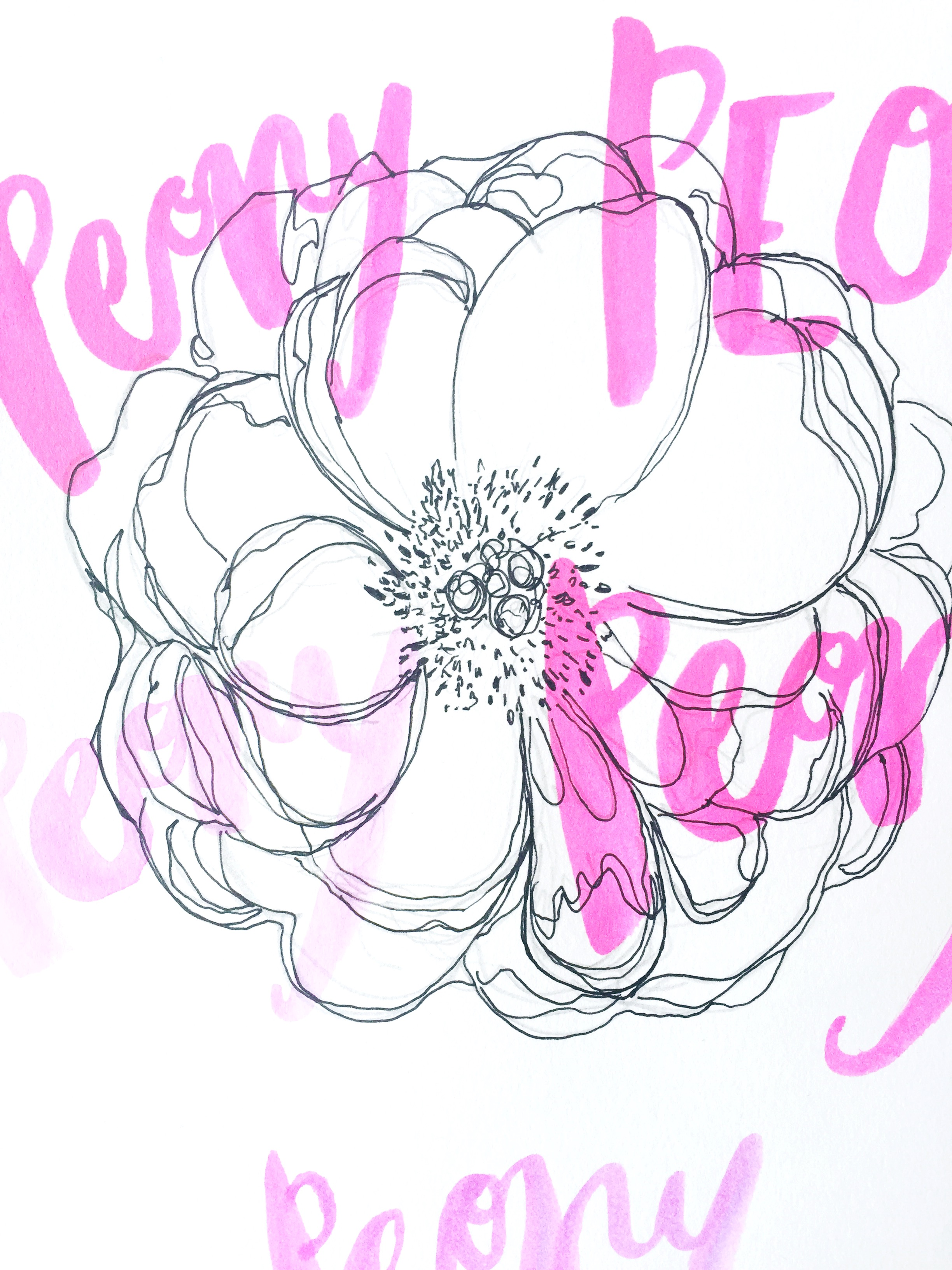 peony line drawing with brush lettering portrait